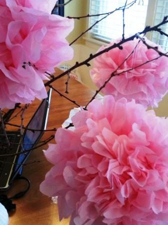 Цветы из папиросной бумаги