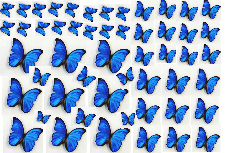 Шаблоны бабочек из бумаги распечатать