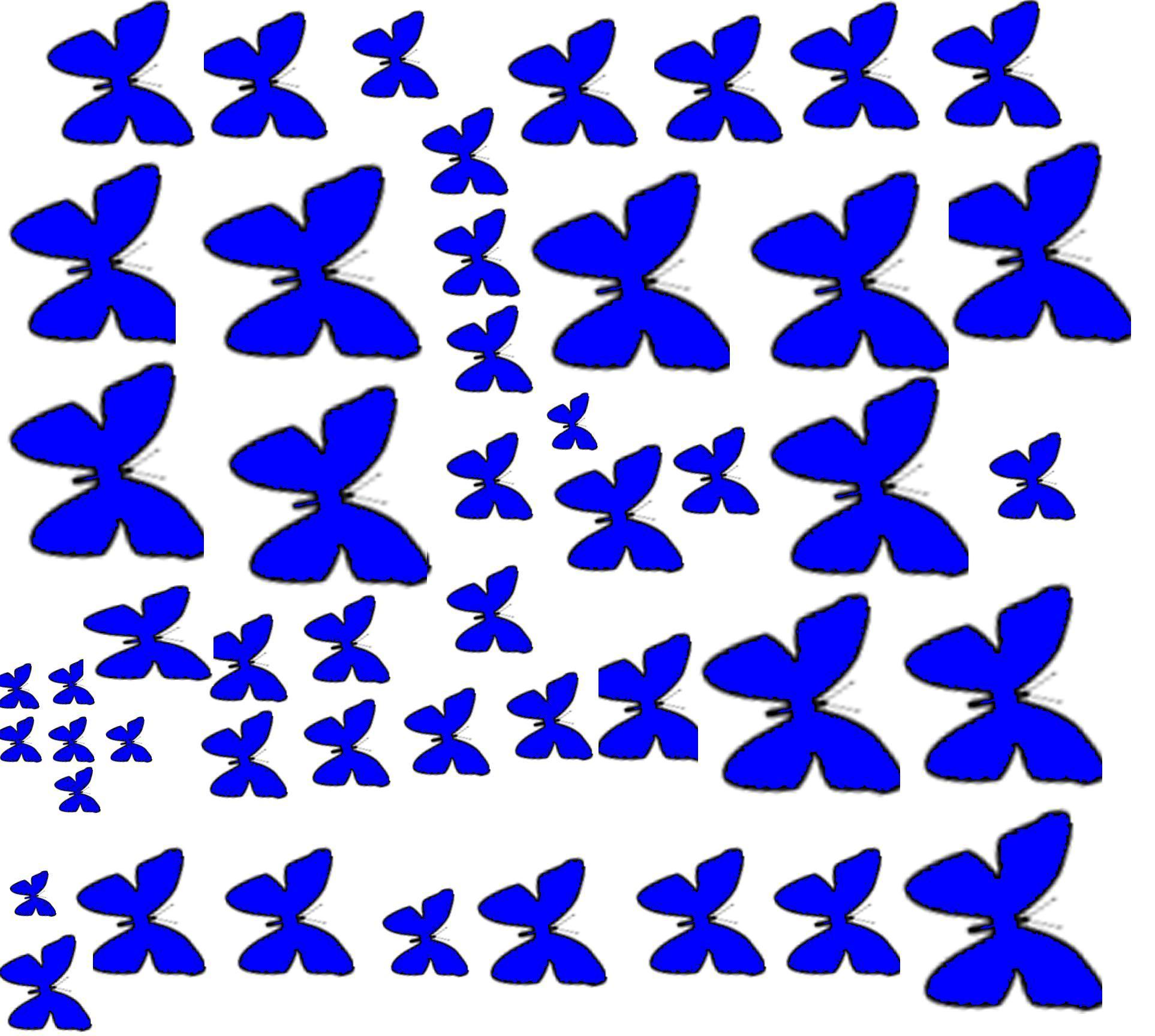 Эскиз бабочки на стену своими руками